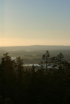 Raggdynan midnight sun Midnight Sun, Sweden, Celestial, Sunset, Outdoor, Beautiful, Sunsets, Outdoors, Outdoor Living
