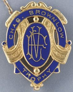 """The Chas Brownlow Medal , awarded to the """"fairest and best"""" player in the Australian Football League, better known as Aussie Rules, sold for AU$203,660 on August 24 2011 #football"""