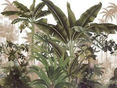Landscapes - Malabar panel cm - 2 strips of 100 cm - Ultra matte Botanical Art, Botanical Illustration, Illustration Art, Illustrations, Art Mural, Wall Murals, Jungle Art, Tropical Wallpaper, Green Leaf Wallpaper