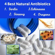 4 Best Natural Antibiotics | RAW FOR BEAUTY