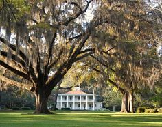 EDEN GARDENS STATE PARK  The focal point of this park is a beautifully renovated, two-story house with elegant white columns and wrap-around porch. Surrounded by moss-draped live oaks and ornamental gardens, the Wesley house inspires visions of hoop skirts and landed gentry.