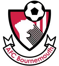 The club badge! Source of inspiration when far away from home - especially with the team winning like crazy!