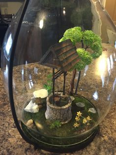 My first lantern fairy garden !  Learning how to create for fairies and making fairy village outside this spring!
