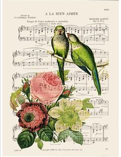 BOGO SALE Antique dictionary art print Roses Peonies Parakeet birds printed on old antique music dictionary page No. 344. $9.75, via Etsy.