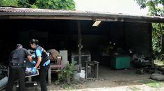 Encuentran matadero de tigres en Tailandia - http://a.tunx.co/Jk1m7