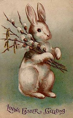 old russian easter postcards | Bunny with what looks like a bouquet of pussy willows.