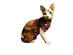 Sphynx Shirt Chinese Crested Shirt Monet Raspberry & Citrus GoldenCouturePet Sophisticated Dog & Cat Clothes