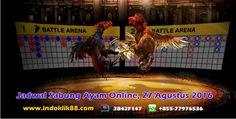 Jadwal Sabung Ayam Online, 27 Agustus 2016 – Informasi sabung ayam yang…