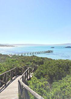 Kraalbaai in the West Coast National Park, South Africa. Cape Town South Africa, West Coast, Wild Flowers, Road Trip, National Parks, Adventure, Beach, Places, Water