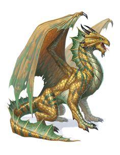 bronze_dragon_5e.jpg