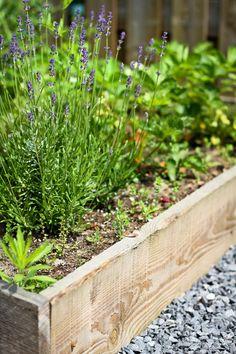 Houten border | Romantisch en natuurlijk tuinontwerp vol kleurrijke wilde bloemen en planten, tussen divers aangelegde paadjes. Het is hier heerlijk toeven op een mooie zomerdag.