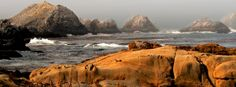 Point Lobos State Reserve, about 3 miles South of Carmel, California. Don't miss Bird Island. Carmel California, California Vacation, California Coast, Trip Planner, Travel Planner, Point Lobos State Reserve, Amazing Places, Beautiful Places, States In Usa