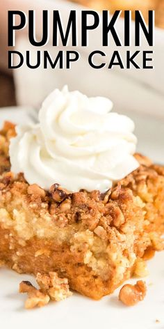 Pumpkin Dump Cake is the perfect fall dessert alternative to pumpkin pie! With a dense pumpkin base and a cake topping both loaded with Pumpkin Pie Spice and chopped nuts! Mini Desserts, Holiday Desserts, Holiday Baking, Just Desserts, Delicious Desserts, Easy Fall Desserts, Crock Pot Desserts, Slow Cooker Desserts, Fall Baking