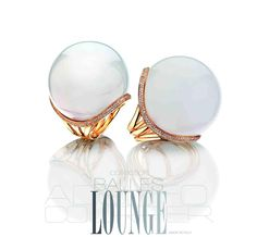 Adolfo Courrier | Lounge Collection