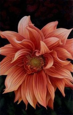 Cynthia Knox Colored Pencil$