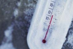 Pharmaceutical Grade Blast Freezers