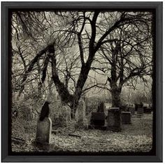 Old Cemetery print  Let this neglected cemetery set a dark mood in your home as the black crow comes to call. Perfect for Halloween, a dark library or long hallway, this print will leave you looking over your shoulder. Available from Zazzle.com; $19.70