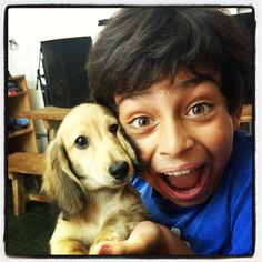 Pedro very happy with his new buddy!  #dog #salatino #clubesalatino #canil #perro #dogs #dogstagram #cute #love #nature #instagood #animales #dog #ilovemydog #ilovemypet #cute #baby #dachshund #teckel #dachshundlonghair #dach #teckelpelolongo #filhote