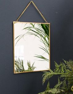 A stunning antique brass mirror in a square shape from The Forest & Co. A perfect update for a bedroom or living room or any room in your house to Gold Vanity Mirror, Brass Mirror, Round Hanging Mirror, Circular Mirror, Hall Mirrors, Starburst Mirror, Mirrored Furniture, Gold Walls, Antique Brass