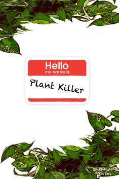 Super cute decal sticker 'Hello My Name Is: Plant Killer'. Nature and Botanical Sticker Set. #nature #botanical #cute #etsy #summer #plants #houseplant #art #sticker #buysticker #buycheapsticker #buylocal #etsystickers #plantsticker #stickerset #stickerpack #redbubble #redbubblestickers Buy Stickers, Red Bubble Stickers, Cheap Stickers, Hello My Name Is, New Sticker, Handmade Items, Handmade Gifts, Free Gifts, House Plants