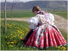 Paloc Hungarian Dance, Art Populaire, Folk Clothing, Hungarian Embroidery, Folk Dance, Folk Costume, Traditional Dresses, Marie, Blog