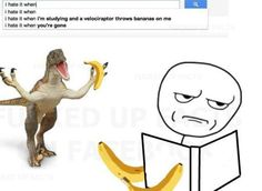 I hate it when i'm studying and a veloclraptor throws bananas on me