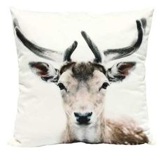 Add interest to your sofa, bed or favourite chair with accent pillows from Urban Barn. Shop patterned, printed & colourful throw pillows online or in-store. Colorful Throw Pillows, Decorative Throw Pillows, Urban Barn, Winter Warmers, Soft Furnishings, Bird Feathers, Accent Pillows, Design Elements, Really Cool Stuff