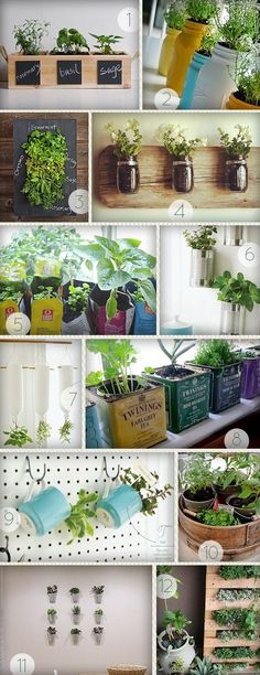 15 Phenomenal Indoor Herb Gardens Metal tins Towels and Plumbing