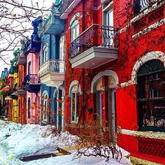 Colourful Townhouses in Le Plateau, Montreal http://www.arcreactions.com/