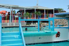 Visit Guana Cay and you must visit #Nippers