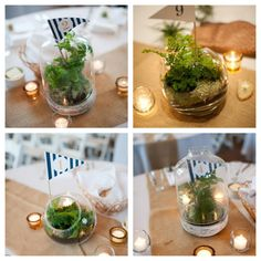 cool/cheap idea for centerpieces- make terrariums! Jenna is a shining star at making these. we could all help make them together to make sure they get done on time :) if not for the wedding maybe the clambake or around the beach house to carry on the farm/forest theme!