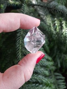 Raw Herkimer Diamond Crystal Specimen from Herkimer County NY. A+ Water Clear Herkimer Diamond. Amethyst Quartz, Clear Quartz, Quartz Crystal, Rose Quartz, Crystals Minerals, Rocks And Minerals, Minerals For Sale, Crystals For Sale, Agate Geode