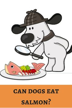 A spicy and meaty diet for our dining is salmon. Is it safe for our furry buddies in family? http://dogbabe.com/can-dogs-eat-salmon