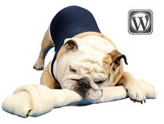 The official blog of the always-witty Butler Blue II, mascot of Butler University in Indianapolis!