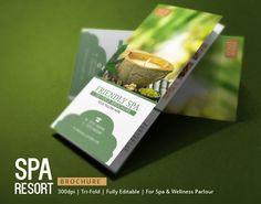 Spa Brochure Design  Modern Design By Innovative Design Via