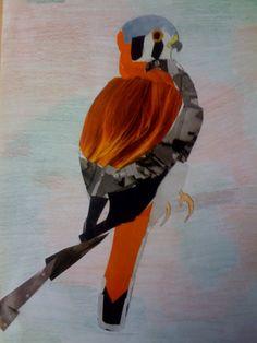 Room 9: Art!: Birds and more birds...