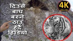 KISIKOT TO MAJUWA WALK TOUR GULMI NEPAL