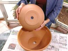 Create a self watering container by putting a pot in a pot.  Terra Cotta is going to suck that water fast, and you might over water...hmm