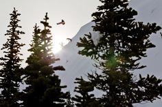 Mikkel Bang. PHOTO: Jeff Curtes | Wallpaper Wednesday: The Pow is Back! | TransWorld SNOWboarding