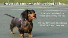 Never ask a man what kind of dog he has...because if he had a Dachshund, he would have already have told you. And you don't want to embarrass him