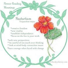 25 Best Floramancy Journal images in 2015   Oracle cards, Magick
