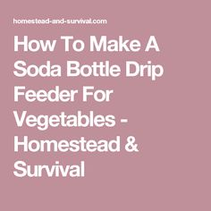 How To Make A Soda Bottle Drip Feeder For Vegetables - Homestead & Survival