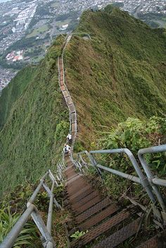 Stairway to Heaven Oahu Hawaii...best hike ever. Did something close to this on Diamond Head with my boy :)