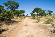 Hunters Road next to Hwange National Park Royalty Free Stock Photo