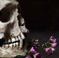 Screaming Skull, Lion Sculpture, Statue, Skulls, Beautiful, Art, Art Background, Kunst, Performing Arts