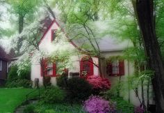 red shutters and door Red Shutters, Tiny Cottages, Cozy Cottage, Beautiful Gorgeous, Yard Ideas, Dream Homes, Bump, My House, Porch