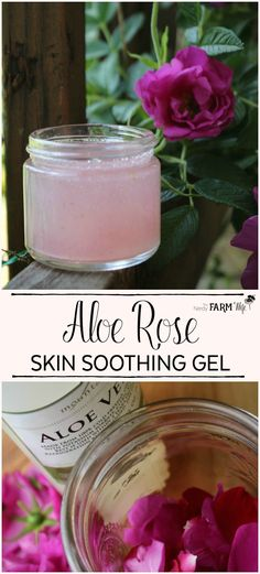 Aloe Rose Skin Soothing Gel - Aloe vera and fresh rose petals combine to make this soothing gel that's useful for sunburn, bug bites, rashes, dry skin, eczema, psoriasis, razor burn, minor cuts/scrapes and radiation burns. Homemade Skin Care, Homemade Beauty Products, Diy Skin Care, Natural Facial, Natural Skin, Fresh Rose Petals, Salve Recipes, Diy Lotion, Eczema Psoriasis