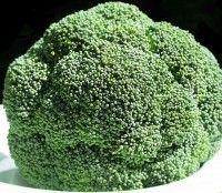 Broccoli is een medicijn.