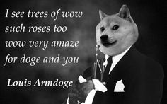 Wow Such Singer... Louis Armdoge I know it's stupid... But Doge cracks me up.