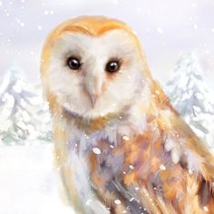 Barn Owl Art Print, Owl Painting, Living Room Wall Decor Gift for Her, Christmas Owl Gifts, Winter B Lilac Sky, Christmas Owls, Owl Print, Free Prints, Fine Art Paper, Baby Animals, Wall Decor, Wall Art, Barn